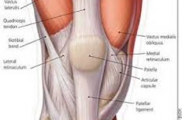 Current Treatment Strategies for Patella Fractures